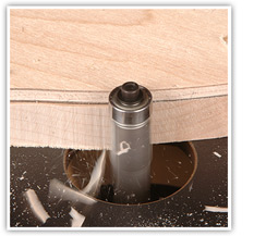 flush trimming router bit